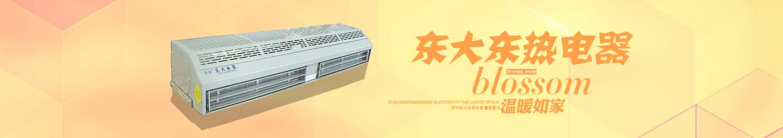 辽宁东大东热电器有限公司